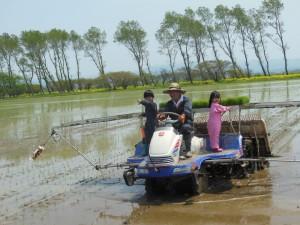 子供たちも田植えのお手伝いに来ました。