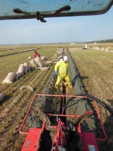 田んぼの排水を良くするための暗渠作業
