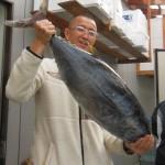 オオマに辿り着く前に八森沖で揚がった10Kg級の本マグロ