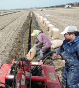 「暗渠施工作業」並んでいる袋は籾殻。掘削機の後ろから出ているのは、ポリパイプ  2017.4.10撮影
