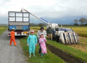 9月の低温気味のお陰で、前半の障害を乗り越えました。 稲刈り中の日曜日は、田圃が孫たちの遊び場。